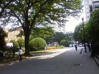 20090526_3